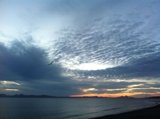 Winter Sunrise18 January 2013